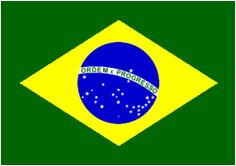 ブラジル年金について説明しています。